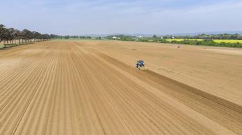 Milliárdokat kaszáltak uniós támogatásból a legnagyobb zöldbárók