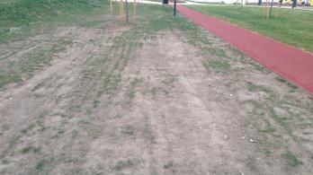 Kiszáradt a fű a most átadott Orczy-parkban