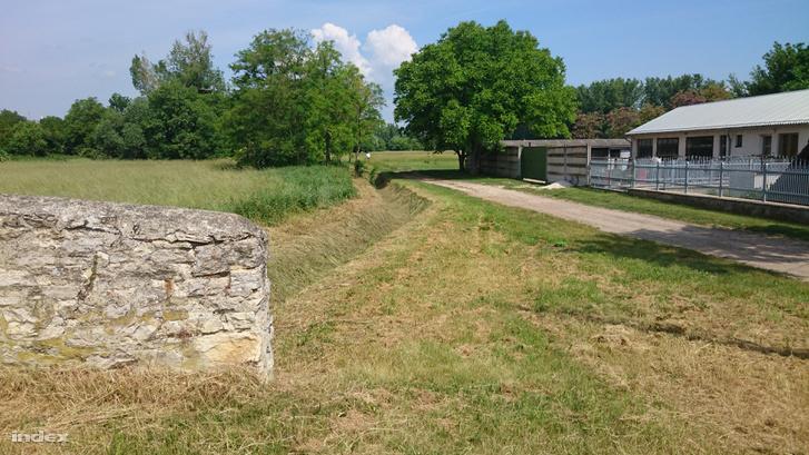 Ez az út megy a falutól a Sédig, itt mehetett a gyanúsított a kislánnyal.