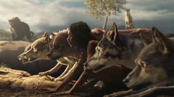 Az igazi Dzsungel könyvéhez tér vissza az élőszereplős Maugli