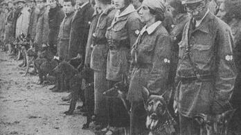 A Vörös Hadsereg kutyákat képzett ki öngyilkos merénylőnek