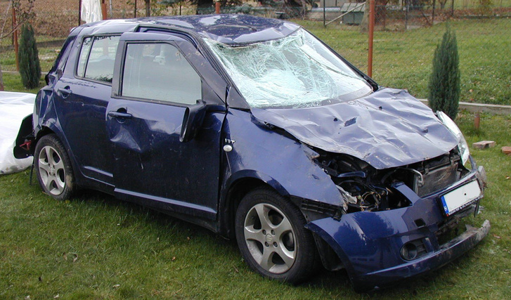 Suzuki preview