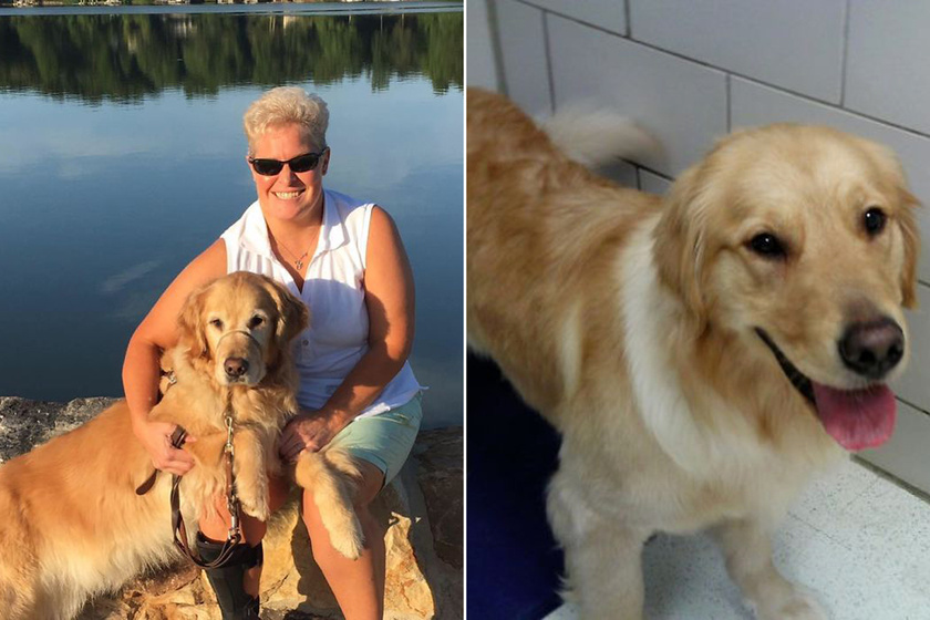 Különleges szemüveget kapott a látássérült nő: először láthatta a kutyáját