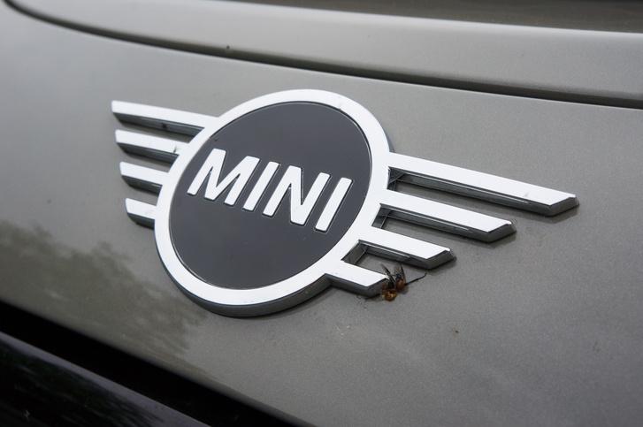 Az új logó a kép tanúsága szerint légyfogóként is funkcionál