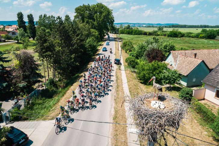 Fotó: Vanik Zoltán / Bringasport