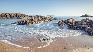 Rejtély, milyen lény tetemét mosta partra a víz Wales-ben