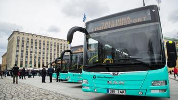 Nagyon bejött az ingyen BKV Tallinnban