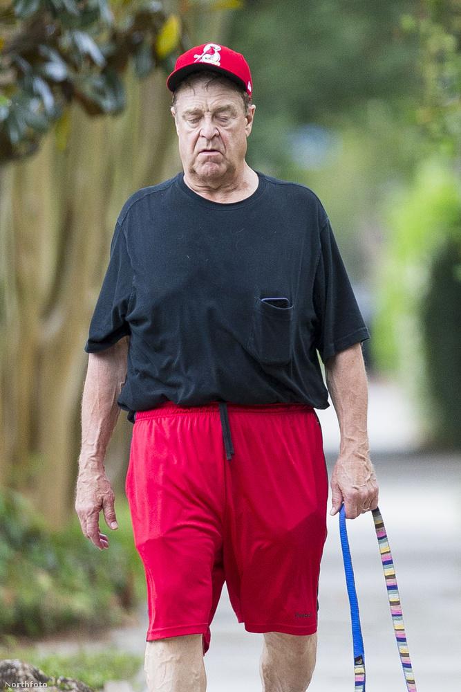 John Goodman 65 éves, és tegnapig úgy nézett ki, hogy karrierje egyik legjobb időszaka következik most.