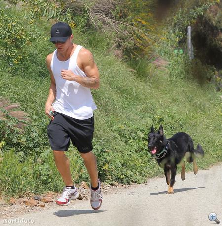 Ryan Phillippe-et saját kutyája üldözi