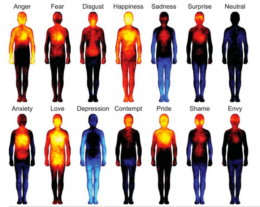 A vizsgált érzelmek, balról jobbra, felső sor: harag, félelem, undor, boldogság, szomorúság, meglepetés, közöny. Alsó sor: szorongás, szeretet, depresszió, megvetés, büszkeség, szégyen, irigység.