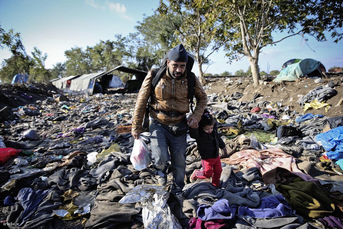 Menekültek a szerb-horvát határon 2015. október 21-én