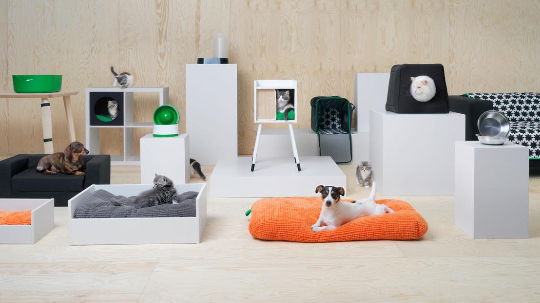 Macskák és kutyák IKEAja