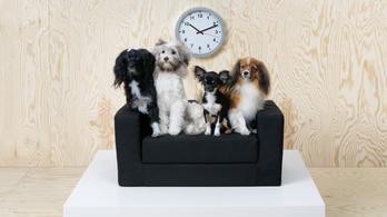 Magyarországra is megérkeznek az IKEA állatbútorai