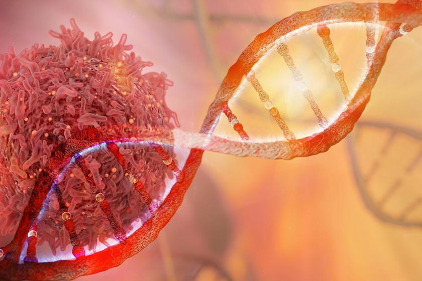 A gének vagy az életmód okozza a rákot? Megszületett a hivatalos válasz