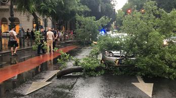 Hatalmas faág zuhant egy autóra a viharban az Opera előtt