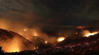 Fél év után sikerült teljesen eloltani Kalifornia legnagyobb erdőtüzét