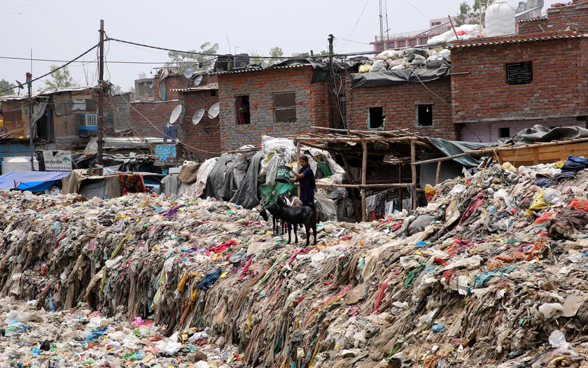 Háztartási szemeteskukát ürít egy kecskék mellett álló, indiai nő egy hulladékkal teli szennyvízcsatorna partján, Újdelhi Taimur Nagar városrészében.