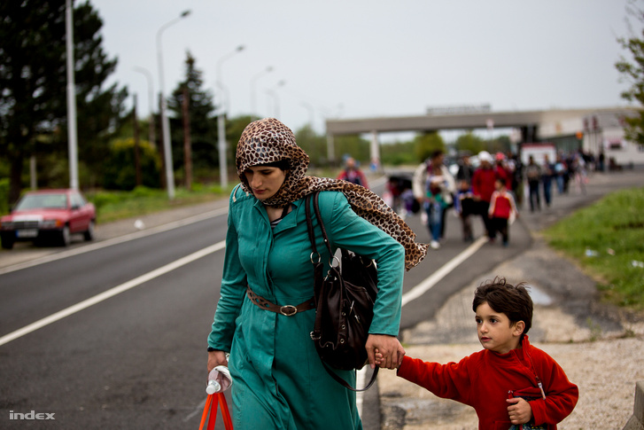 Menekültek gyalogolnak az osztrák határ felé Magyarországon 2015 szeptemberében