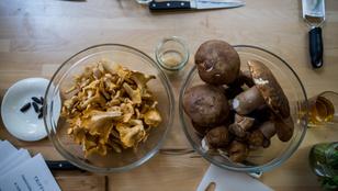 Ínyencfalatok a nyári szezon legjobb gombáiból. Így készítsd el őket!