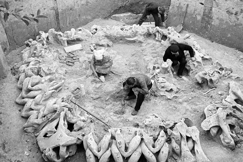 Több évtizede kezdődtek az ásatások.