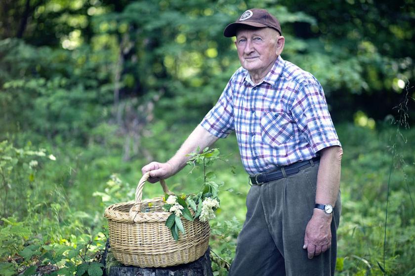 Ezek Gyuri bácsi legkedvesebb gyógynövényei: elmondta, mit használ szívesen