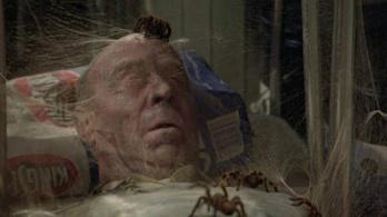 Aki eddig nem félt a pókoktól, most fog