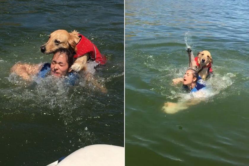 """""""Szép napunk volt a tónál, aztán a kutyám majdnem vízbe fojtotta a nővéremet"""" - ezzel a szöveggel posztolta a képeket Holly."""