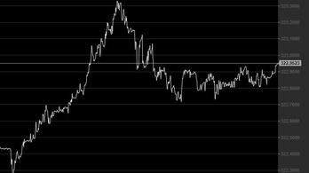 Újabb mélypontra zuhant a forint árfolyama