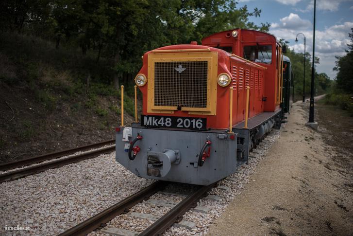DSC 5834