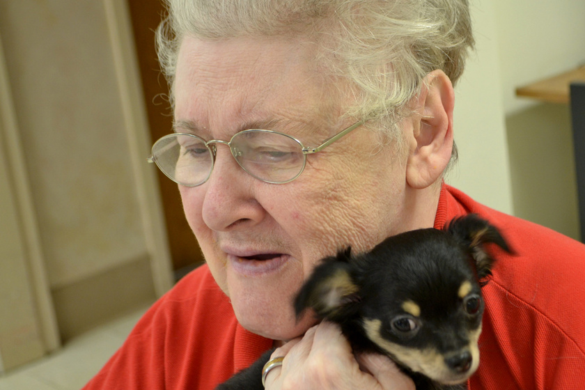 Ez az idősek otthona tud valamit: zseniális módszerrel szépítik meg az utolsó éveket