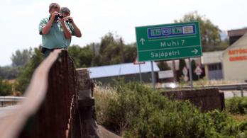 M1: Akár négy-öt medve is kóborolhat Észak-Magyarországon