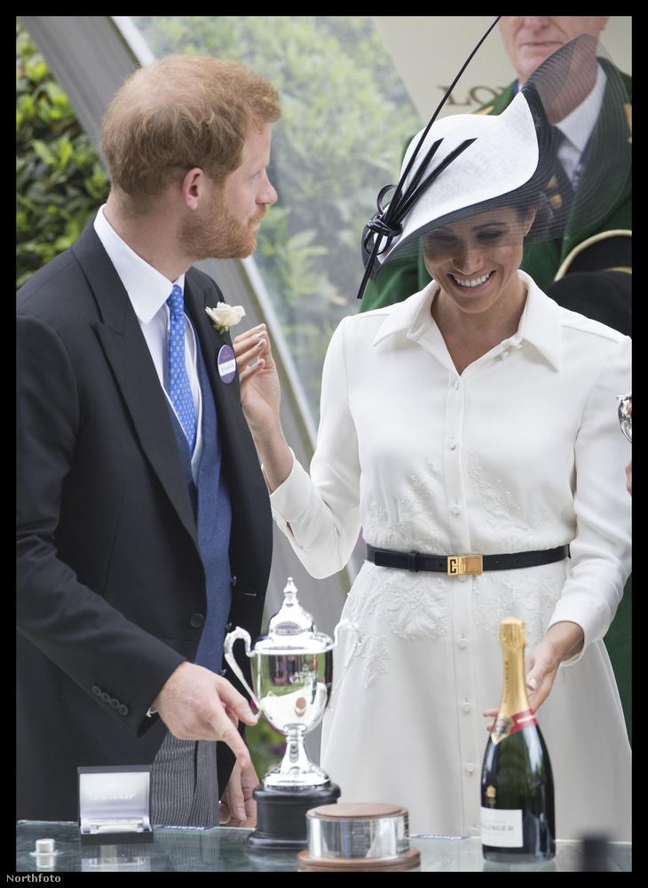...mikor nem éppen a friss házas Harry hercegre és Meghan hercegnére koncentrálnak.