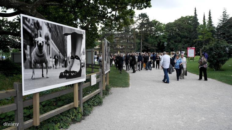 A koncepció Jacques Rocher-től, Yves Rocher fiától származik, aki 2004-ben szülőfalujában, La Gacilly-ben összegründolt egy olyan fotófesztivált, ami nemcsak a művészetről szól, hanem komoly társadalmi felelősségvállalásról is