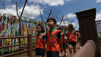 Minden ötödik észak-koreai gyerek alultáplált