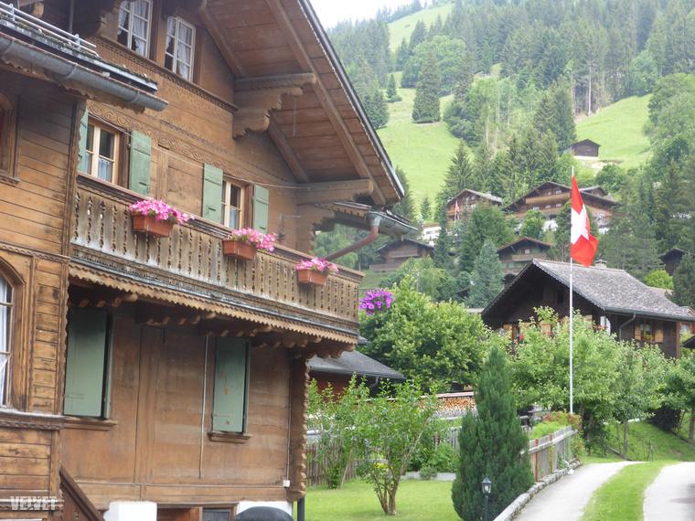 Ha az embernek úgy alakul az élete, hogy kicsit hosszabban időzik néha Svájcban, akkor vegye a fáradságot és barangoljon egyet ebben a gyönyörű és példamutatóan gondozott tájban