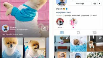 Videómegosztóvá válik az Instagram