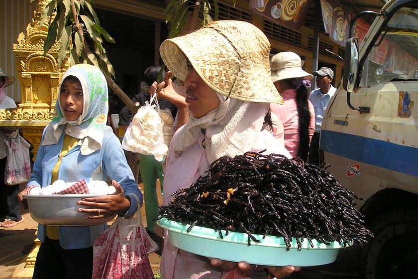 sült-rovar-ázsia