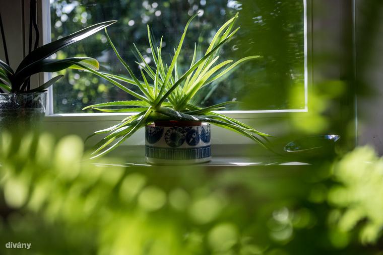 A csempe az ablakpárkányokon is a praktikum funkcióját tölti be