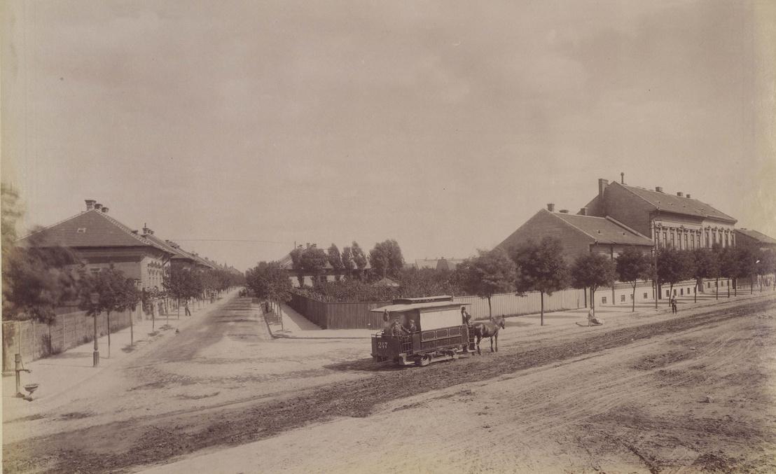 Klösz György fényképe nemcsak az Orczy út és a Szabóky (ma Bíró Lajos) utca sarkán elhaladó lóvasutat örökítette meg, hanem Kaiser Nándor házát is (jobb oldalon az első). A felvétel 1890. után készült