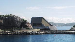 Víz alatti étterem nyílik Norvégiában: szó szerint csodás!