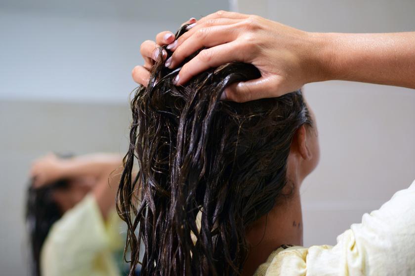 Kétszer olyan gyorsan nő a haj a zöld teás pakolástól - A hajhullást is megszünteti