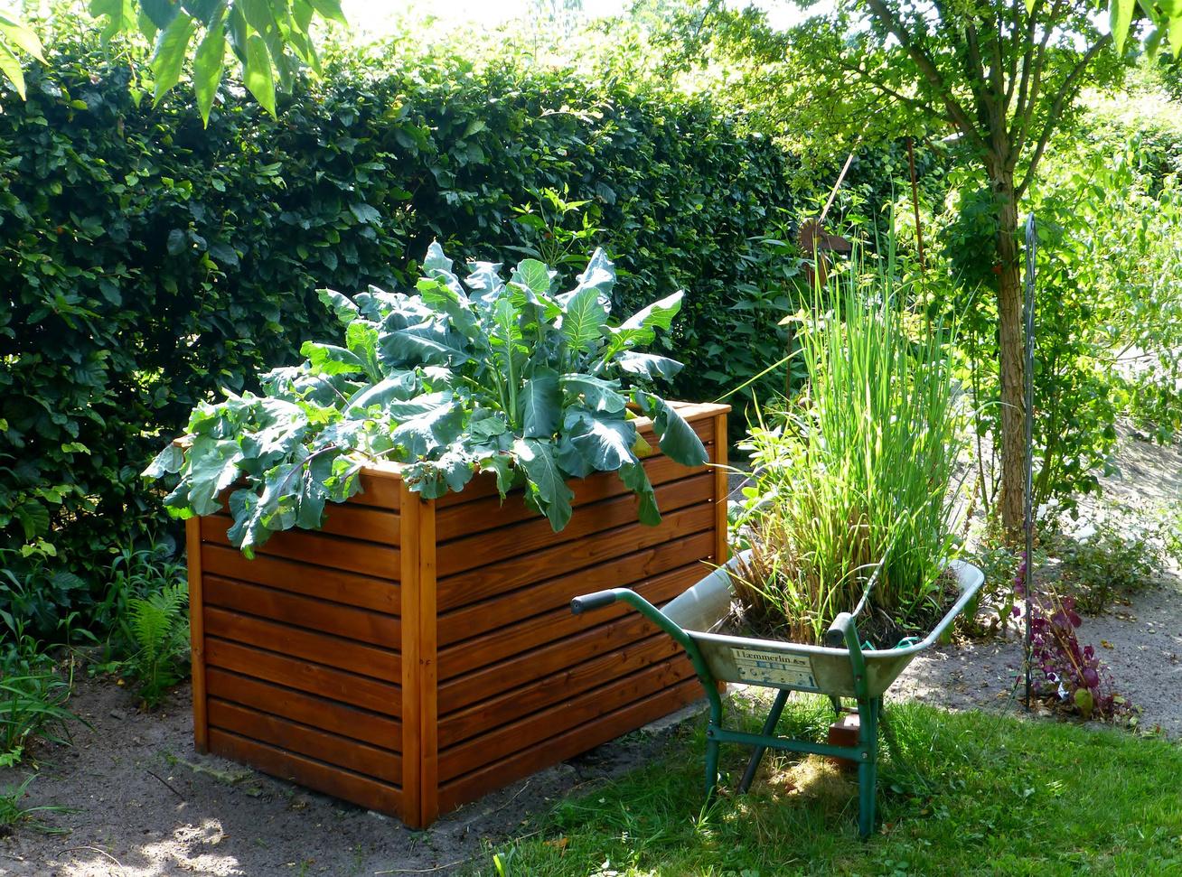 magaságyás virág kert ágyás (1)