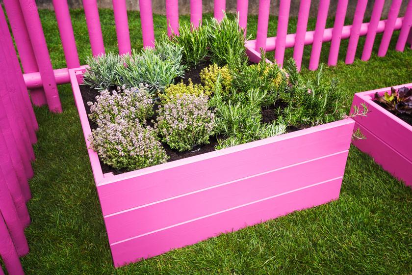 magaságyás virág kert ágyás (2)