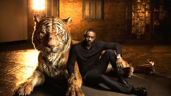 Ki a legfaszább gyerek, Idris Elba, Dwayne Johnson vagy Jason Statham?
