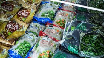 Nébih: nem hibázott a gyártó, amelynek fagyasztott termékeit visszahívta a hatóság