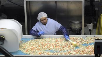 Miért lehet teljesen biztonságos a halálos mérgezéseket okozó fagyasztott zöldség?