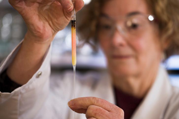 Az Ausztrál Nemzeti Egyetem kutatóiskolájának laborvezetője, Janet Hope tartja a világ legrégebbi ismert színmintájának számító rózsaszín pigmenteket tartalmazó folyadékot.
