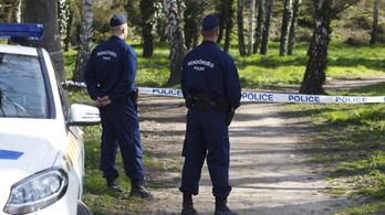 Feldarabolt holttestek a pilisszentiváni erdőben