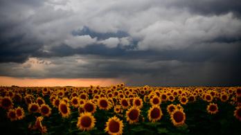 Jön a hidegfront: eső és hidegebb idő lesz szerdán