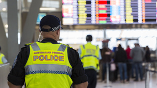 Magára hagyott nyuszi okozott bombariadót egy ausztrál reptéren